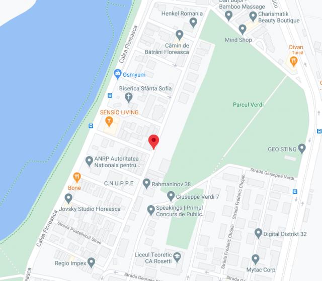 One Rahmaninov neighbourhood map