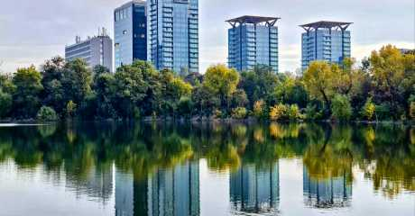 The future of real estate market